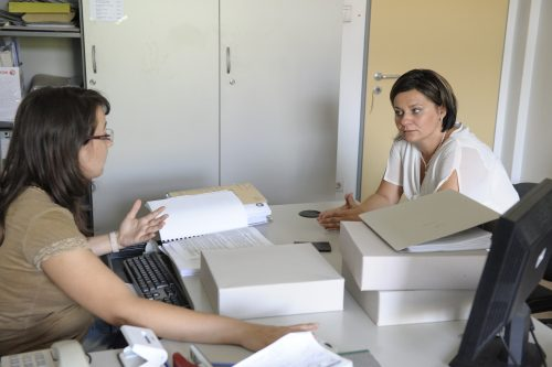 Közgyűlés határozatainak előkészítése, végrehajtása